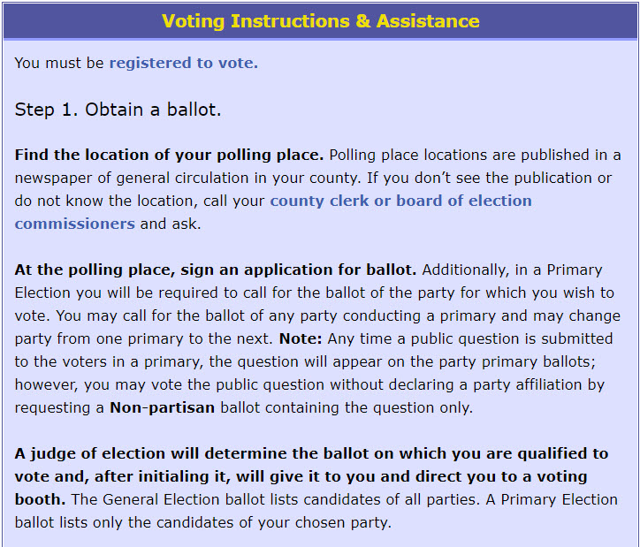 voting instructions and assistance